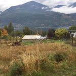 LAND OPPORTUNITY: Garden Space, Land + Llamas in Harrop-Procter