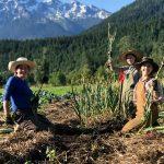 FARM JOBS: Pemberton, BC – Plenty Wild Farms, 2021 Field Lead & Crew