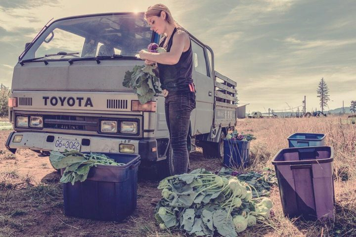 salt & harrow farm tsawwassen job apprenticeship