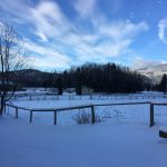 LAND OPPORTUNITY: Cleared farm land just outside Terrace, BC
