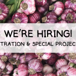 We're hiring! YA ADMINISTRATION & SPECIAL PROJECTS LEAD