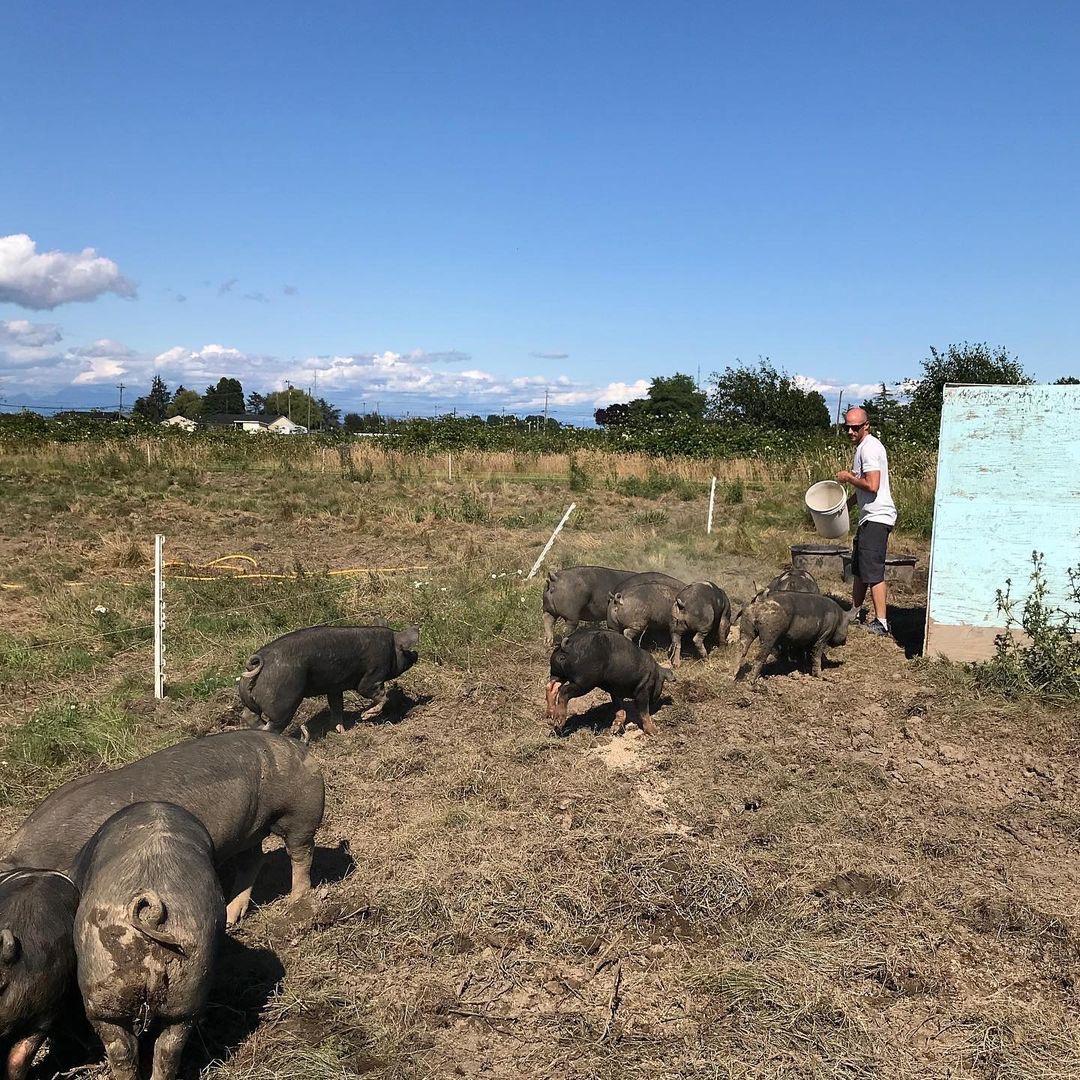 tsawwassen farm school jobs