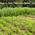 FARM JOB: CEDAR, BC – Empress Acres, Agriculture Worker