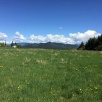 LAND OPPORTUNITY: 17 Acres with Housing in Tappen, BC
