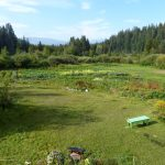 LAND OPPORTUNITY: Remote farming in the vast expanse of the Chilcotin Plateau, BC