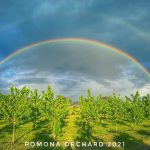 FARM JOB: Kelowna, BC – Pomona Orchard, Farm Hand