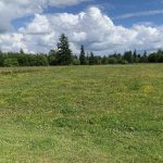 LAND OPPORTUNITY: 6 ACRE FLAT FARMLAND – LANGLEY, BC