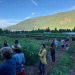 EVENT RECAP: Specialty Cut Flower Farm Tour at Stone Meadow Gardens