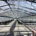 LAND OPPORTUNITY: Turn-Key Nursery or Garden Centre with 14 Commercial Greenhouses, Auxiliary Buildings and House – Cedar, BC