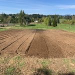 LAND OPPORTUNITY: 2.5 Acres for Market Gardening and 10 Acres for Livestock – Central Saanich, BC