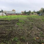 LAND OPPORTUNITY: Two Approximately 1/3 Acre Fields, Shared Barn Space and 4 Acres of Forest – Saanichton, BC