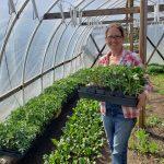 FARM JOB: Victoria, BC – City's Edge Farm, Farm Hand