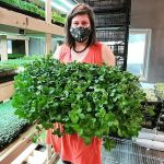 FARM INTERNSHIP: Rossland, BC – Flourish MicroFarm + Happy Hills Farm, Indoor MicroFarm Intern