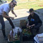 FARM JOB: Nanaimo, BC – Morgan Creek Farm, Vegetable Farm Hand