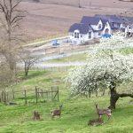 [FILLED] FARM JOB: Abbotsford, B.C. – Muir Farm, Farm Helper