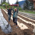 FARM JOB: Lillooet, BC – Seed to Culture, Farm Assistant