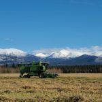 APPRENTICESHIP: Whitehorse, Yukon  – Mandalay Farm